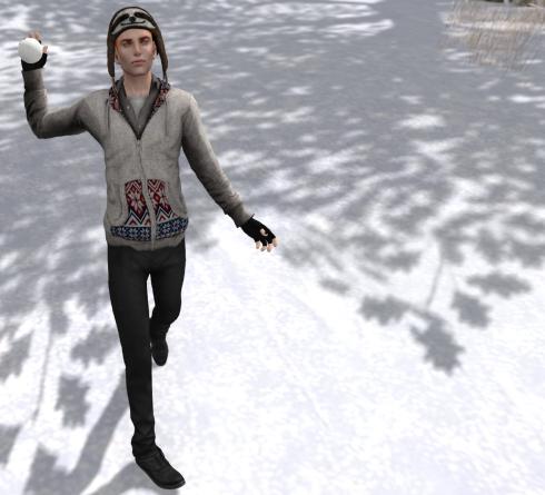 Snowfight2